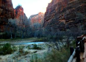 zion-virgin-river-2106